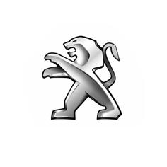 Peugeot Van Shelving Logo