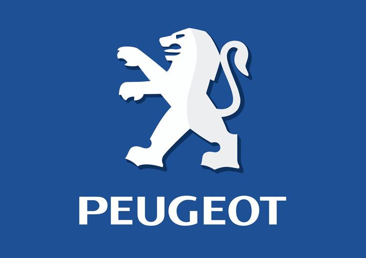 Peugeot Van Racking